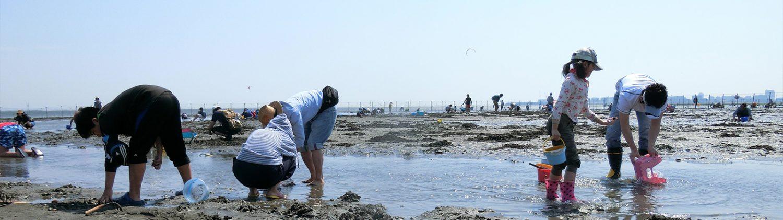 ふなばし三番瀬海浜公園・ふなばし三番瀬環境学習館