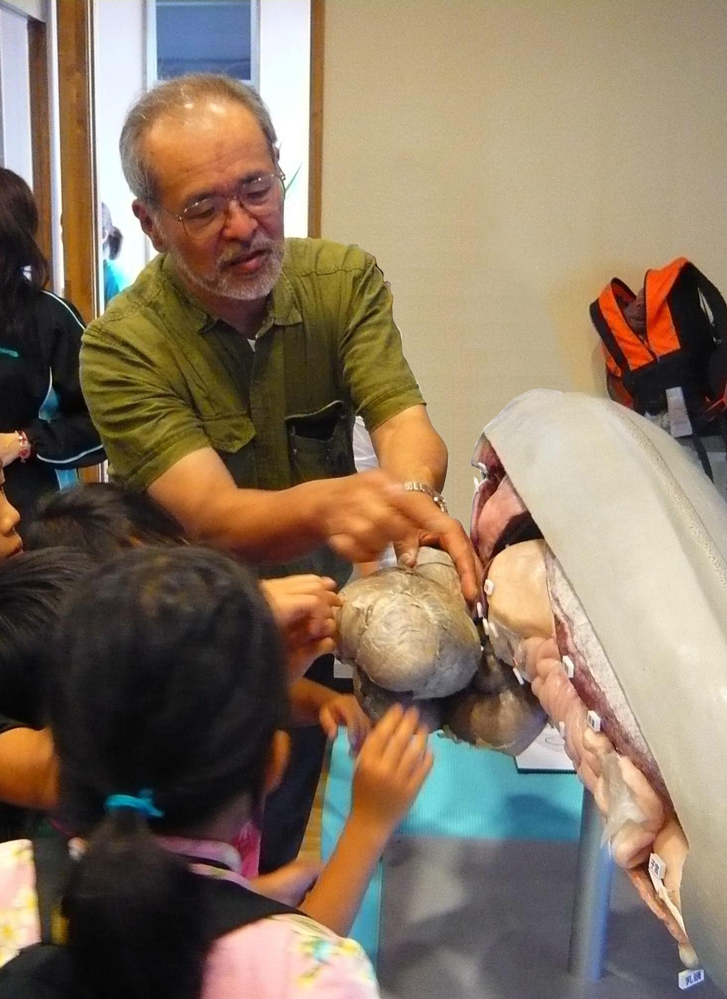 クジラ博士のスナメリのお話「東京湾にイルカいるか?」