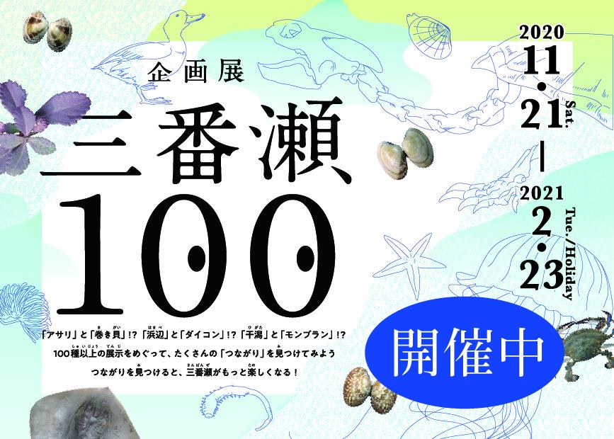三番瀬100