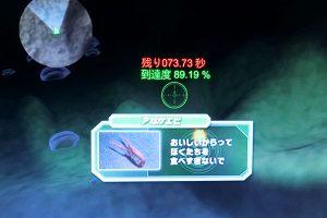 東京湾VR海底散歩