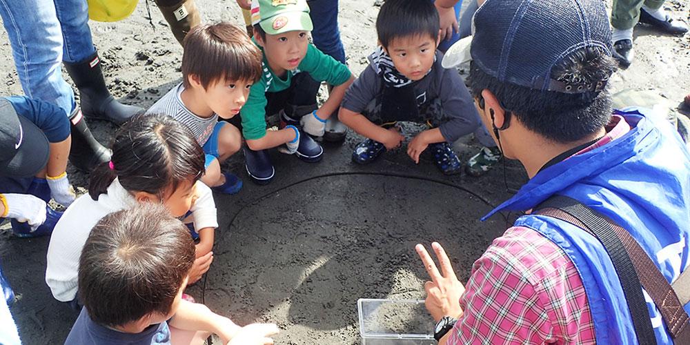 三番瀬探検隊「干潟の生きものを探そう」
